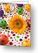 Concepts Greeting Cards - Sunflower and colorful balls Greeting Card by Garry Gay
