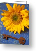 Still Life Photo Greeting Cards - Sunflower and skeleton key Greeting Card by Garry Gay