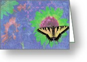 Colorful Photography Painting Greeting Cards - Sunflower Butterfly Blue Greeting Card by JQ Licensing