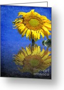 Colourful Mixed Media Greeting Cards - Sunflower Reflection Greeting Card by Andee Photography