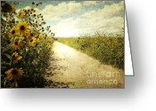 Big Sky Greeting Cards - Sunflower Road Greeting Card by Andrea Hazel Ihlefeld