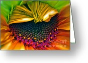 Cheery Greeting Cards - Sunflower Smoothie Greeting Card by Gwyn Newcombe