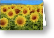 Romania Greeting Cards - Sunflowers in the Field Greeting Card by Jeff Kolker