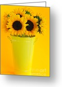 Summertime Greeting Cards - Sunflowers in vase Greeting Card by Elena Elisseeva