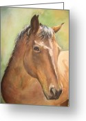 Horsehead Greeting Cards - Sunlit Horse Greeting Card by Patricia Pushaw