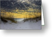 Florida Sunset Greeting Cards - Sunlit Passage Greeting Card by Janet Fikar