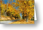 Rural Road Greeting Cards - Sunny Country Road Greeting Card by Lois Bryan
