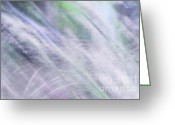 Delicacy Greeting Cards - Sunny Wind. The Music of the Silver Grass. Impressionism. TNM Greeting Card by Jenny Rainbow