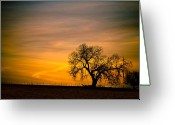 Sunset Wall Art Greeting Cards - Sunrise 1-27-2011 Greeting Card by James Bo Insogna