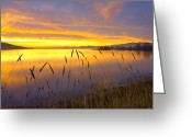 Merced County Greeting Cards - Sunrise At San Luis Reservoir San Greeting Card by Tim Fitzharris