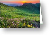Flowers Greeting Cards - Sunrise behind Goat Wall Greeting Card by Evgeni Dinev