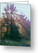 Spirit Rising Greeting Cards - Sunrise Cross Greeting Card by Cindy Wright