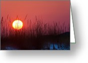 Surf Silhouette Greeting Cards - Sunrise Greeting Card by David Nunuk