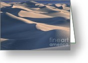 Sand Dunes Greeting Cards - Sunrise in Death Valley Greeting Card by Sandra Bronstein