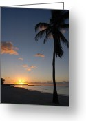Florida Beaches Greeting Cards - Sunrise in Key West 2 Greeting Card by Susanne Van Hulst