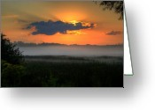Lake Photographs Greeting Cards - Sunrise in the swamp-3 Greeting Card by Robert Pearson