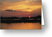 Bays Greeting Cards - Sunrise Over Delacroix Island Greeting Card by Medford Taylor