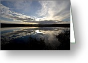 Canada Swan Greeting Cards - Sunrise Over Swan Lake, Alberta, Canada Greeting Card by Zoltan Kenwell
