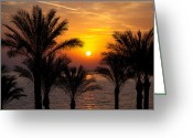 Sheikh Greeting Cards - Sunrise over the Red Sea Greeting Card by Jane Rix