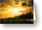 Tree-lined Greeting Cards - Sunrise Over Tree Line Greeting Card by Christopher Elwell and Amanda Haselock