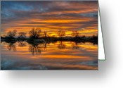 Restful Greeting Cards - Sunrise Reflection in the River Greeting Card by Connie Cooper-Edwards