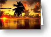 Surf Silhouette Greeting Cards - Sunrise Greeting Card by Steve Thorpe