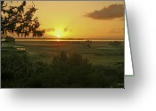 Carolina Greeting Cards - Suns Up Greeting Card by Phill  Doherty