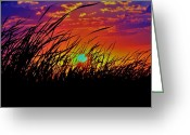 Grass Pyrography Greeting Cards - Sunset Greeting Card by Alisha Luby