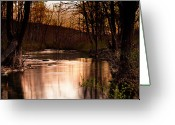Tamyra Ayles Greeting Cards - Sunset at Kings River Greeting Card by Tamyra Ayles