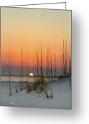 Gulf Of Mexico Greeting Cards - Sunset at Pensacola Pass Greeting Card by Richard Roselli