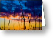 Beach Grass Greeting Cards - Sunset at St. Pete Beach Florida Greeting Card by Patrick  Flynn