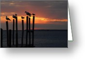Sunset Posters Greeting Cards - Sunset Bay 1 Greeting Card by Joyce StJames