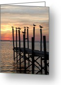 Sunset Posters Photo Greeting Cards - Sunset Bay 27 Greeting Card by Joyce StJames