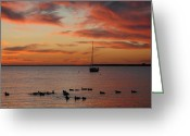 Sunset Posters Greeting Cards - Sunset Bay 59 Greeting Card by Joyce StJames