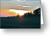 The Nature Of Sunsets Greeting Cards - Sunset Fields Greeting Card by Debra     Vatalaro