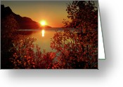 Tree Greeting Cards - Sunset In Ersfjordbotn Greeting Card by John Hemmingsen