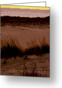 Dune Grass Greeting Cards - Sunset in the Dunes Greeting Card by Michelle Calkins