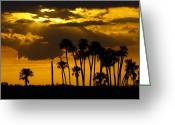 Florida Swamp Greeting Cards - Sunset in the refuge Greeting Card by Richard Mann