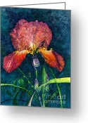 Barbara Painting Greeting Cards - Sunset Iris Greeting Card by Barbara Jewell