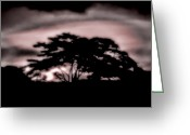 Gloaming Greeting Cards - Sunset Greeting Card by Michael Dalla Costa