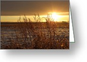 Snow Scenes Greeting Cards - Sunset On Field Greeting Card by Christy Patino