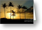 Sea Turtles Greeting Cards - Sunset On Molokai Greeting Card by Bob Christopher