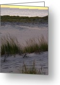 Dune Grass Greeting Cards - Sunset on the Lake Greeting Card by Michelle Calkins