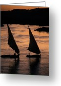 Nile River Greeting Cards - Sunset On The Nile River Greeting Card by Richard Nowitz