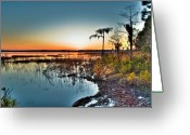 Cypress Tree Greeting Cards - Sunset over Ocean Pond Greeting Card by Rich Leighton