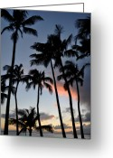 ; Maui Greeting Cards - Sunset Palms Greeting Card by Kelly Wade