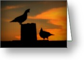 Gloaming Greeting Cards - Sunset Quail Greeting Card by Dean Leh