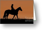 Running Horse Greeting Cards - Sunset Stroll Greeting Card by David  Naman