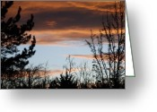 Sunset Scenes. Digital Art Greeting Cards - Sunset Thru The Trees Greeting Card by Rob Hans