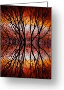 Sunset Wall Art Greeting Cards - Sunset Tree Silhouette Abstract 2 Greeting Card by James Bo Insogna